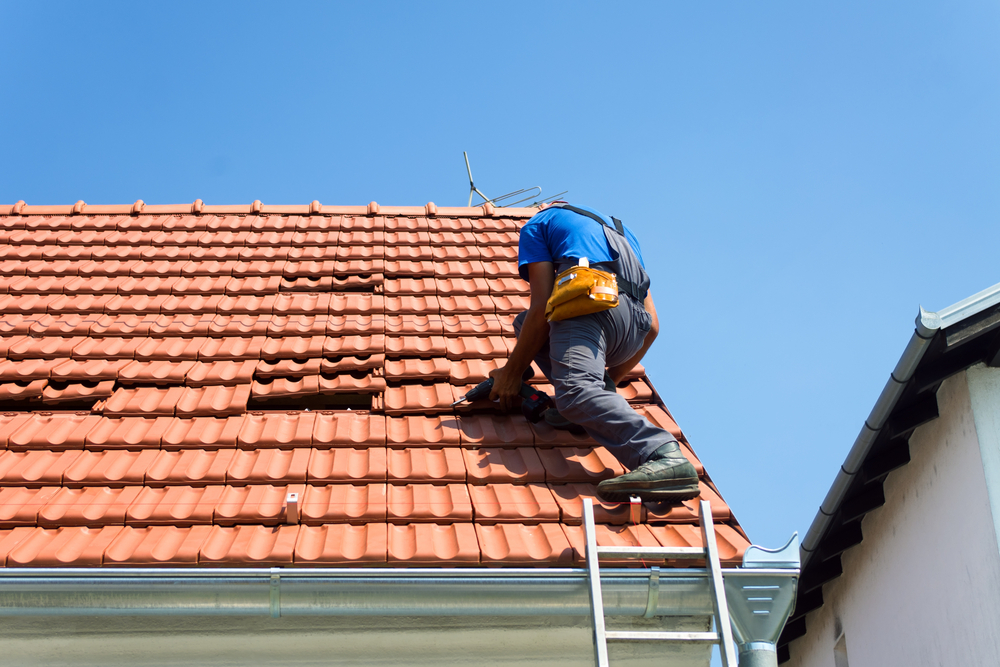 professional blog about roofing